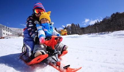 長野縣龍王滑雪公園RYUOO ADVENTURE PARK