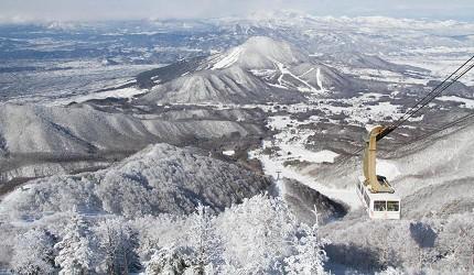東京近郊的長野龍王滑學公園內的滑雪場