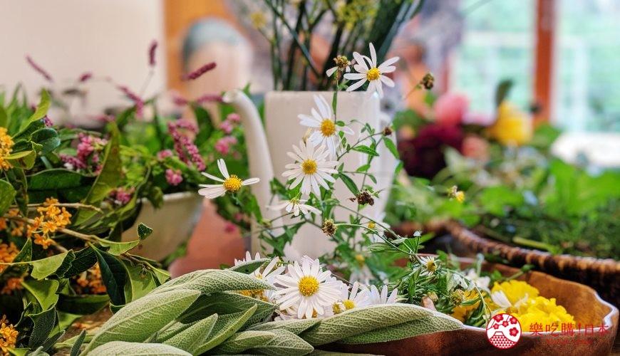 長野池田町住宿推薦「八壽惠莊」: 被洋甘菊包圍的香草之鄉,就像住在阿爾卑斯!