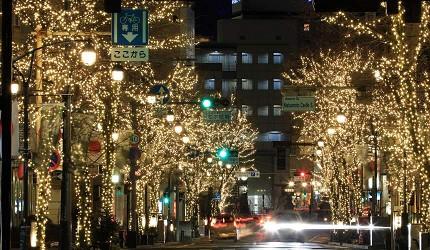 日本冬天自由行最好玩祭典松本冬日节的并木道夜景灯饰正面拍