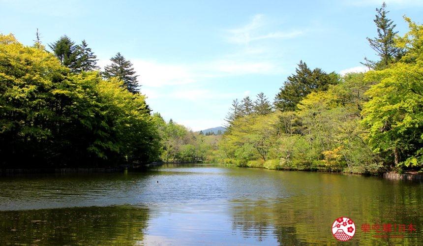 日本長野輕井澤一日遊必去人氣景點天鵝湖「雲場池」