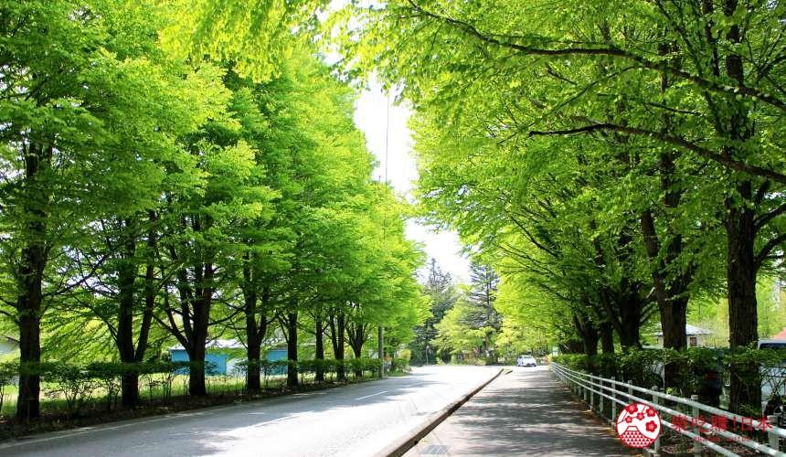東方小瑞士輕井澤一日遊風景優美舒適充滿綠意推薦景點